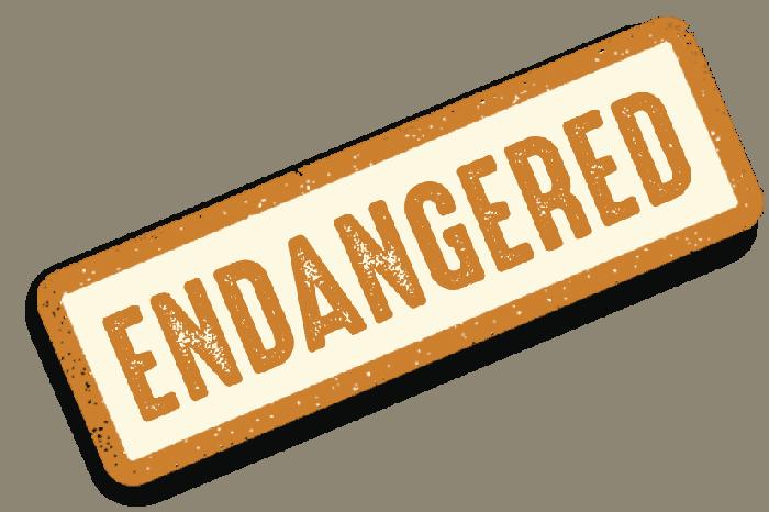 RNP-001_Badge_Endangered_700px_3